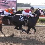 Winner's Circle 2012