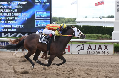 Congratulations to Ruth Barbour COUNTRY BOY 123 with jockey Cory Spartaro for winning the 2016 Picov Derby