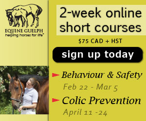 Behaviour and Safety eWorkshop Feb 22 and the Colic Prevention eWorkshop April 11
