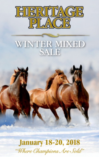 /Quarter Horses Winter Mixed Sales