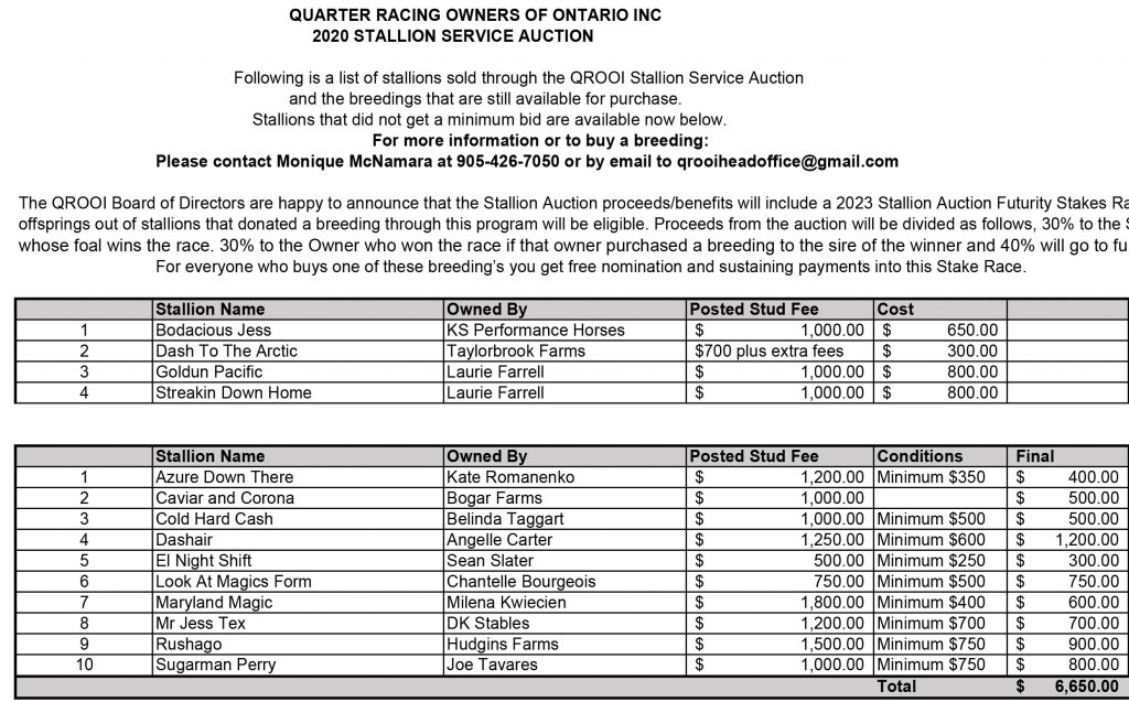 Stallion Auction- Final